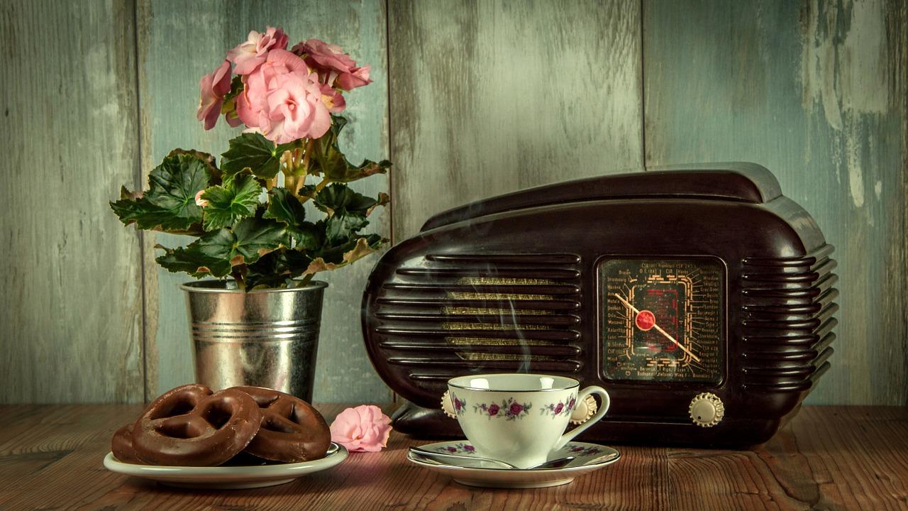 Maritaca: um canal de rádio para as crianças