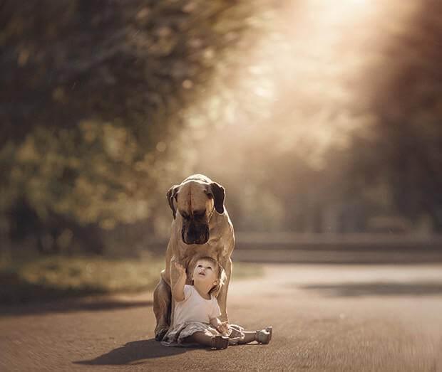 Crianças e seus grandes companheiros: os cães
