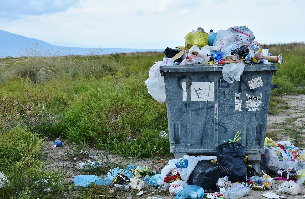 9 dicas para ensinar às crianças sobre sustentabilidade