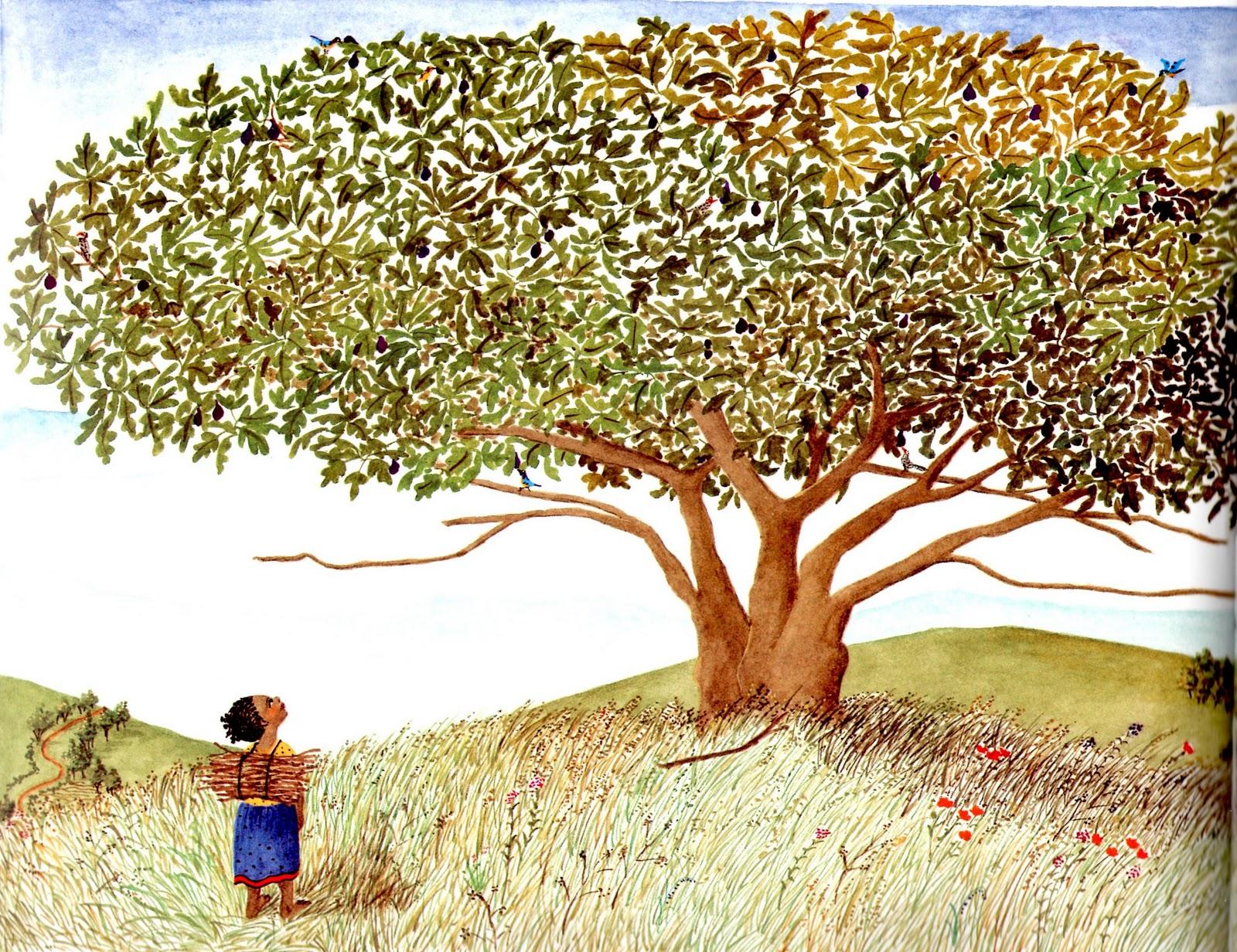 Livros que fazem as crianças crescerem #18 – Mais um pouquinho de África