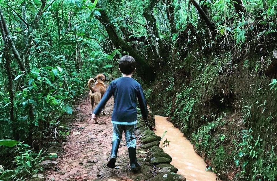 Mambaia: potencializando aprendizagens pelo contato com a natureza